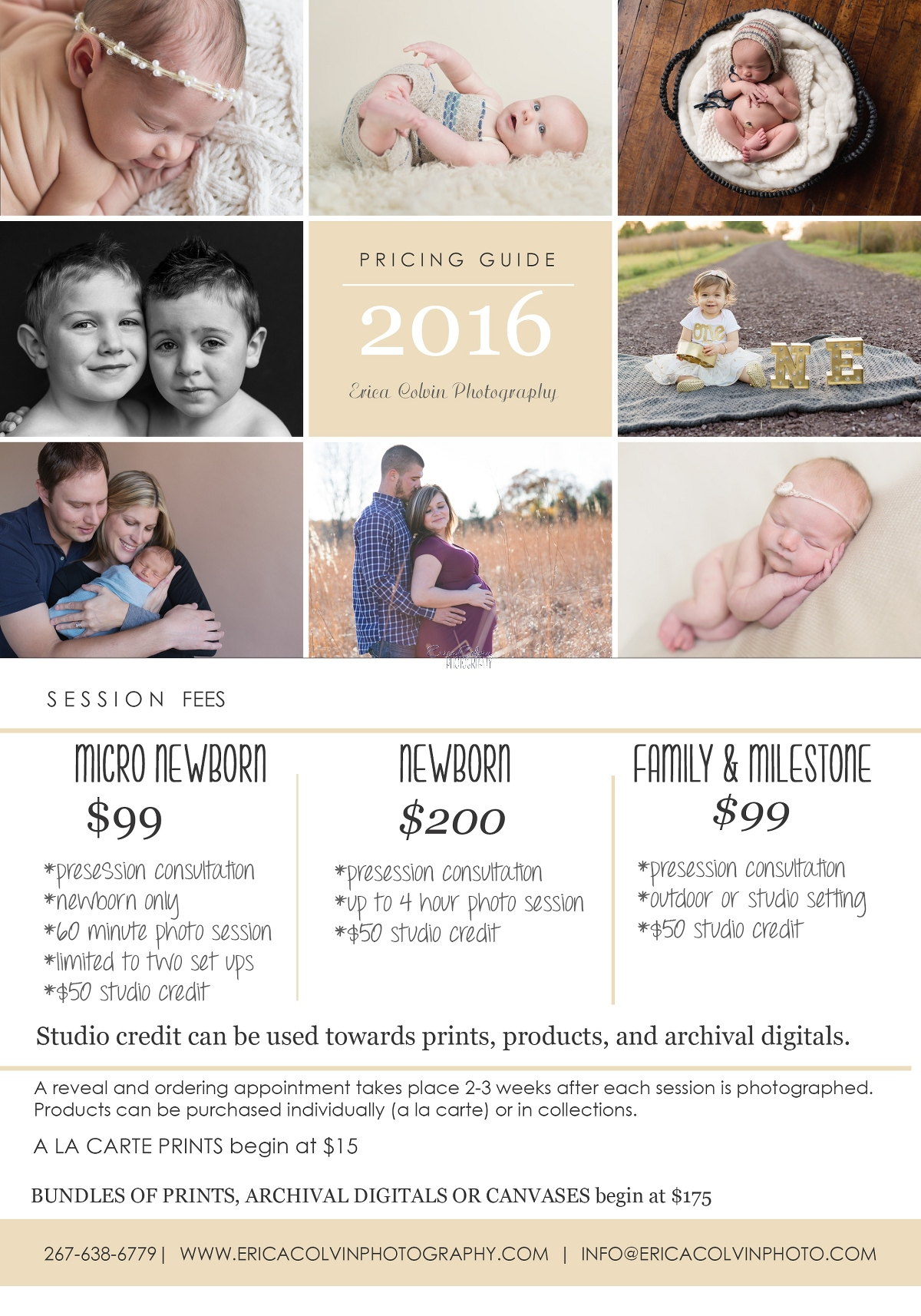 Posed Newborn Pricing » Erica Colvin Photography