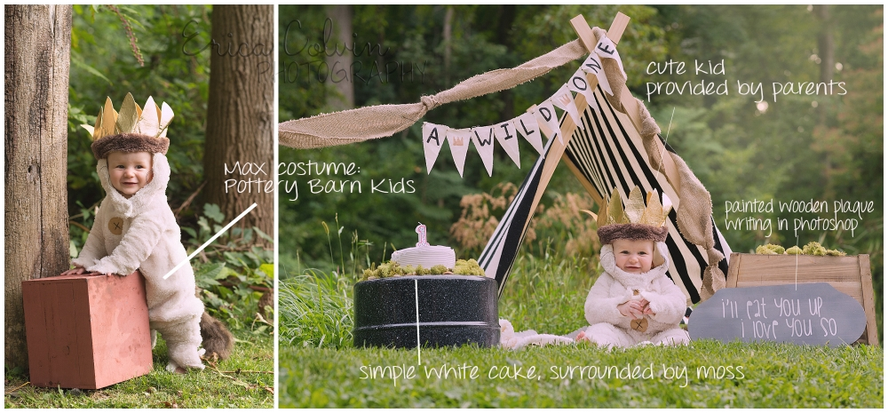 Wild One First Birthday Max, Pottery Barn Where the Wild Things Are Erica Colvin Photography Lansdale Pa, Montgomery County